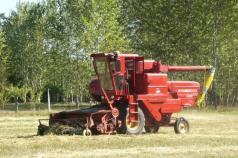 oat harvest 2008 017.jpg