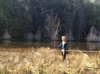 LINC Restoration Project at the Johnny Osland Reserve Spring 2018