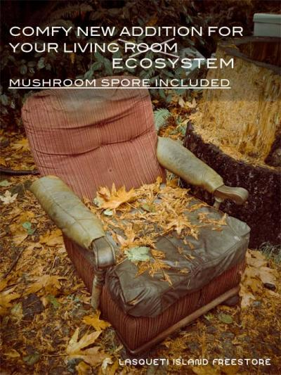 Have the comfort of mushrooms growing in your own living room