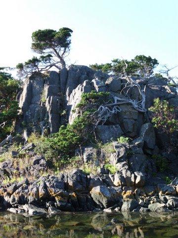 Finnerty Islands 1
