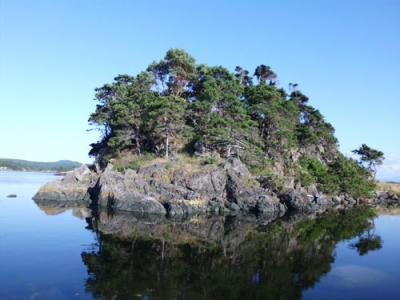 Finnerty Islands 2