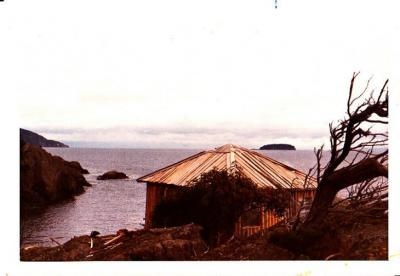 George Laing's Cabin, 1975