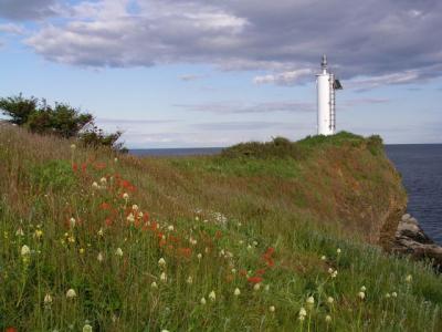 sangster lighthouse.jpg