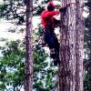 Forestry Demo @ Jessie's Path
